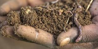 सेंद्रीय शेती समजून घेऊ या