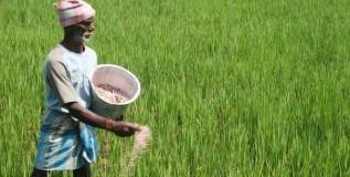 शेती व्यवसायाविषयी दृष्टीकोन
