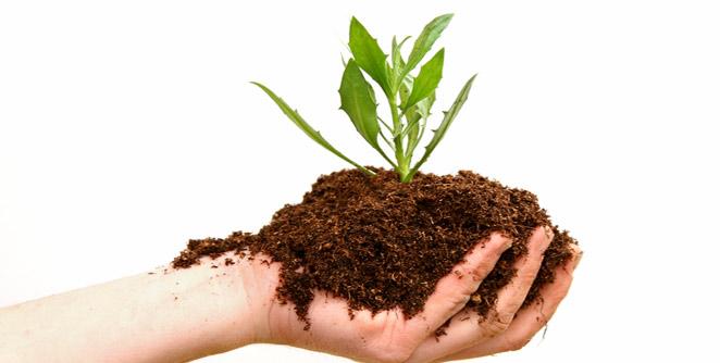 https://www.shetisalla.com/2019/09/rapid-compost-method.html