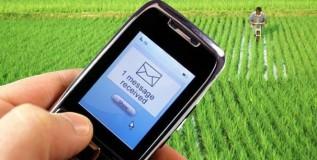 शेतकऱ्यांना एसएमएस द्वारे मार्गदर्शन