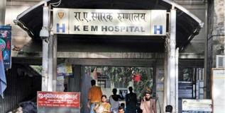 मुंबईच्या पाच निवासी डॉक्टरांना डेंगीची लागण