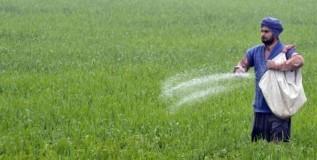 शेतक-यांच्या प्रश्नांकडे फारसे गंभीर नाही केंद्र सरकार