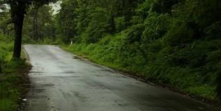 कोकणात वादळी पाऊस