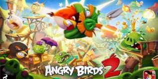 angri-birds
