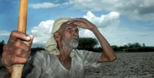 महाराष्ट्रातील शेतकऱ्यांना केंद्राकडून मिळणार नुकसान भरपाई