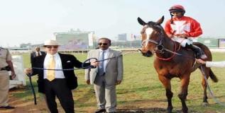 अबब ! घोड्याची किंमत साडेसात कोटी