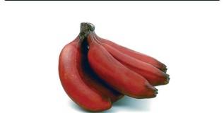 आरोग्यदायी लाल केळी
