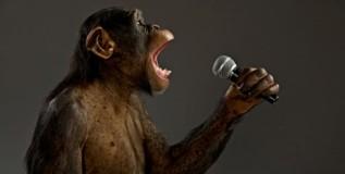 कधीकाळी माणसासारखी माकडेही गात असत