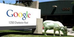 गुगलमध्ये २०० पगारी बकर्या