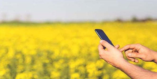 digital-farmers