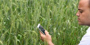 शेतकऱ्यांना अद्ययावत माहिती देणार हे मोबाईल ॲप