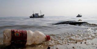 जल्लिकट्टू आंदोलन : चेन्नईच्या किनाऱ्यावर साठला १०० टन कचऱ्याचा डोंगर!