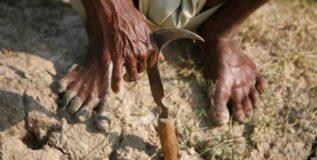 निदान शेतकर्यांपुढे तरी…