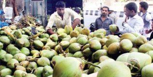 कर्नाटकातील मल्टिप्लेक्समध्ये होणार शहाळ्यांची विक्री