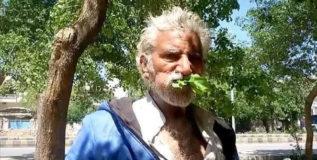 मागील २५ वर्षांपासून फक्त पाने, लाकुड खाऊन जगते आहे हि व्यक्ती