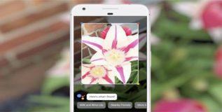 गुगलच्या नव्या अॅपमुळे तुमचा मोबाइलचा कॅमेरा आता फक्त कॅमेरा राहणार नाही