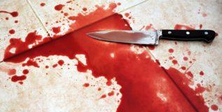 शीना बोरा हत्याकांडातील तपास अधिकाऱ्याच्या पत्नीची हत्या