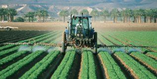शेतीत व्यावसायिकता आवश्यक