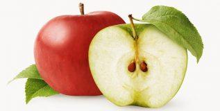 सफरचंदाचे बी विषारी