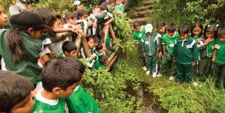 मुलांना पर्यावरणाच्या रक्षणाचे धडे कसे द्याल?