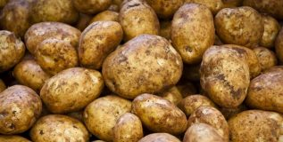 बटाट्याचे जास्त प्रमाणात सेवन आरोग्यास धोकादायक