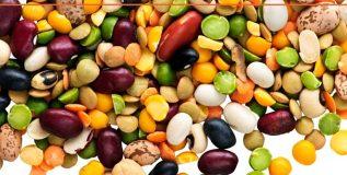 आपल्या आहारामध्ये मोडविलेल्या कडधान्याचे फायदे