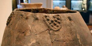 जॉर्जियामध्ये सापडली ८००० वर्षं जुनी वाईन
