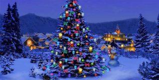 ख्रिसमस ट्री विषयी कांही
