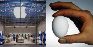 अंडे न फोडता उंचावरून टाका- अॅपलची ७६ लाखांची नोकरी तुमची