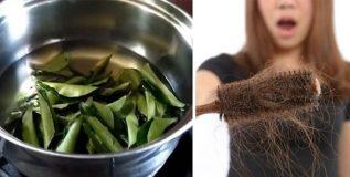केसांच्या आरोग्यासाठी गुणकारी कढीपत्ता