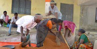 राज्य सरकारने थकवले १ लाख शेतकऱ्यांचे ७०० कोटी रुपये