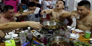 वादग्रस्त डॉग मीट फेस्टिव्हल चीनमध्ये सुरु