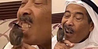 व्हिडिओ; या महाशयांचे दात साफ करतो चक्क जिवंत पक्षी