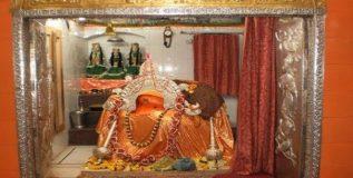 अमृतसरच्या बडा हनुमान मंदिरात वानरजत्रा सुरु
