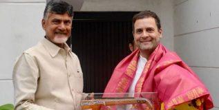 भाजपला हरविण्यासाठी एकत्र काम करू – नायडूंना भेटल्यानंतर राहुल गांधींची ग्वाही