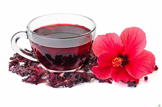 hibiscus-tea2