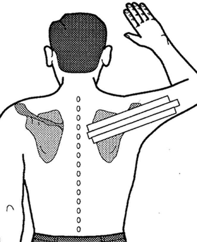 shoulder-exercises2