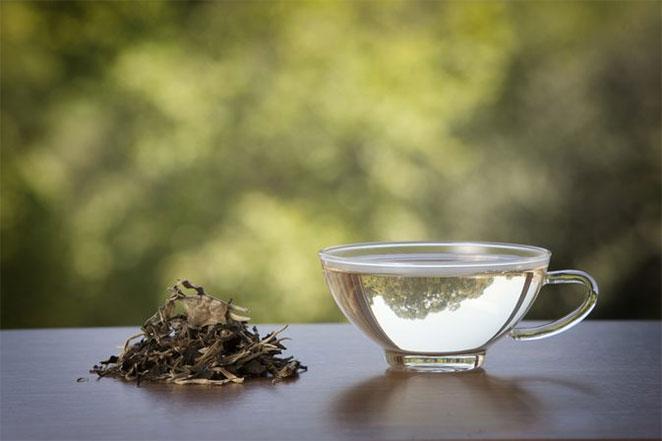 White-Tea1