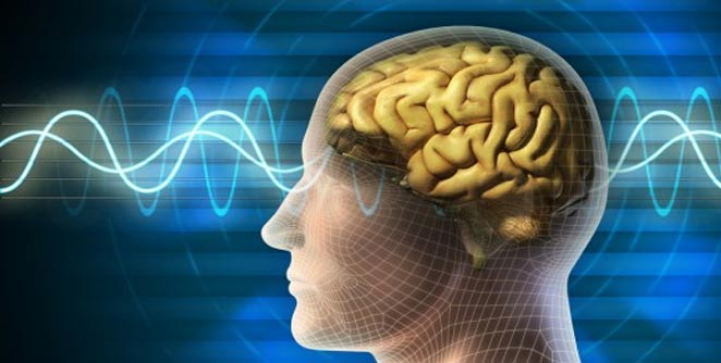 मेंदूच्या विकासासाठी औषध