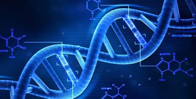 डीएनएवरून रोगनिदान