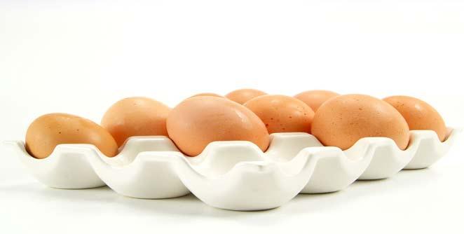 अंडी कोलेस्टेरॉल मुक्त असल्याचा दावा