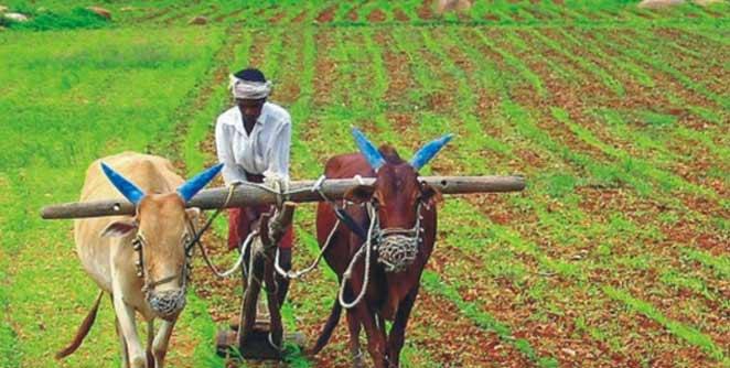 शेतकरीहिताचे पाऊल