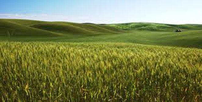 नवा कृषि कार्यक्रम