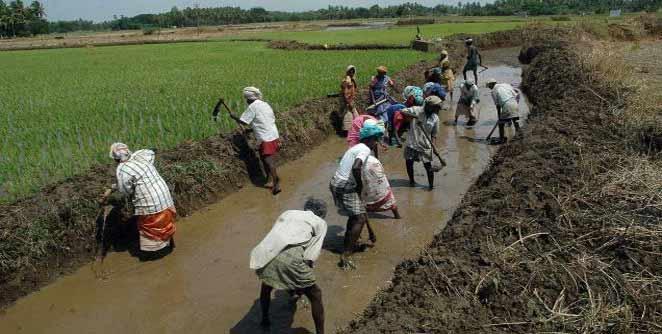 ग्रामीण रोजगाराची क्षेत्रे